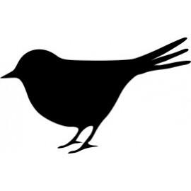 Naklejka ścienna, na ścianę, dekoracyjna N98 ptak O