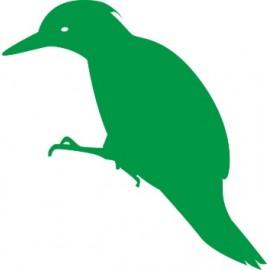Naklejka ścienna, na ścianę, dekoracyjna N99 ptak